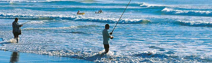 Sunshine Coast Beach Fishing